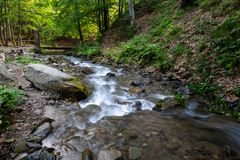 Ström i en bergskog Royaltyfria Bilder