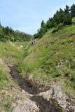 Ström i jätte- berg, Tjeckien Arkivfoto