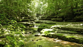 Ström i skogen lager videofilmer