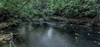 Ström i Virginia Water, Surrey, Förenade kungariket Royaltyfri Foto