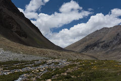 Ström som flödar till och med det Ladakh landskapet, Indien, Asien Fotografering för Bildbyråer