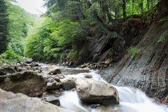 Ström som flödar till och med skogen från berglutningen stort stenvatten royaltyfri fotografi