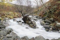 Ström som ner leder till en sjö Royaltyfri Fotografi