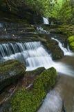 Ström & vattenfall, Greenbrier, Great Smoky Mountains NP Arkivbild
