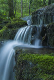 Ström & vattenfall, Greenbrier, Great Smoky Mountains NP arkivbilder