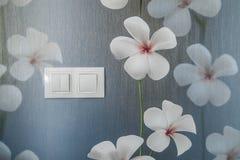 strömbrytare Royaltyfri Fotografi