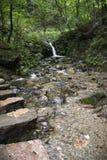 Ströme und Steine im Wasser Lizenzfreie Stockfotografie