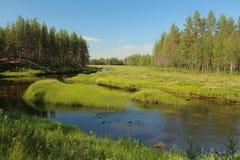 Strömen Sie bei Svansele Dammaenger, eine ehemalige Wasserwiese in Schweden Stockfotos