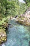 Strömen Sie, die vintgar Schlucht Blejski im Wald, Slowenien durchfließend Lizenzfreies Stockfoto