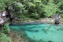 Strömen Sie, die vintgar Schlucht Blejski im Wald, Slowenien durchfließend Lizenzfreie Stockfotos