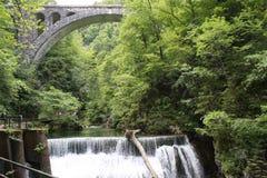 Strömen Sie, die vintgar Schlucht Blejski im Wald, Slowenien durchfließend Stockfoto