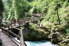 Strömen Sie, die vintgar Schlucht Blejski im Wald, Slowenien durchfließend Lizenzfreies Stockbild