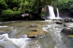 Strömen Sie im Wald während des tropischen Waldes Stockfotos