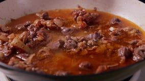 Strömendes Wasser in Bratpfanne mit Rindfleisch und Zwiebel stock video footage