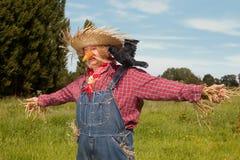 strömförande scarecrow Arkivbild