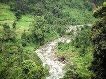 Strömförsörjning som är skattskyldig av floden Teesta, den Rangit floden som flödar till och med en tät ursprunglig djungel i nor royaltyfri foto