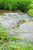 Strömflöden fort över gräs- kullar royaltyfri foto