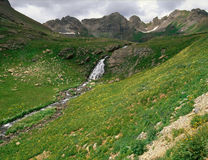 Strömma att stiga ned från den klara sjön, San Juan Range, Colorado Arkivfoto