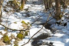 Strömma i vinter med snow Royaltyfria Bilder