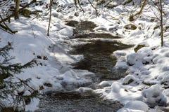 Strömma i vinter med snow Royaltyfri Fotografi