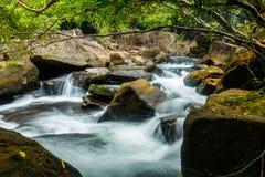 Strömma med stenblock och den tropiska skogen i Koh Kood, Thailand Royaltyfria Bilder