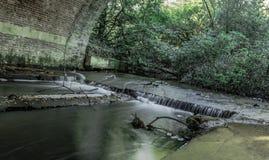 Strömma under bruden i Virginia Water, Surrey, Förenade kungariket Royaltyfria Bilder