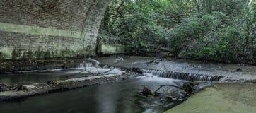 Strömma under bruden i Virginia Water, Surrey, Förenade kungariket Royaltyfria Foton