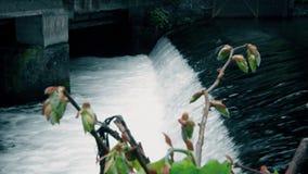 Strömma vatten nära av bron i staden, blommor framme