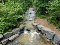 Strömmen eller liten vik i skogen eller träna med vaggar arkivfoto