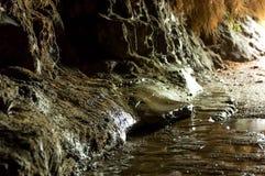 Strömmen i grottan sipprar igenom jordningen royaltyfri foto