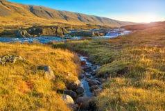 Strömmen som flödar in i en snabb bergflod på gryning Arkivbild