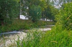 Strömmen som flödar till och med ett träd, fodrade fältet i solljus arkivfoto