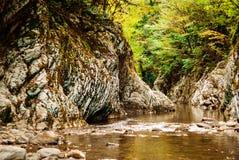 Ströms kanjon i rainforesten fotografering för bildbyråer