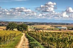 Straßburg und das Rhein-Tal Stockfoto