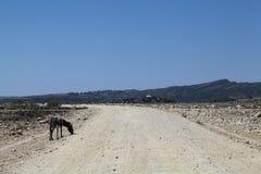 Straße in Äthiopien Lizenzfreies Stockfoto