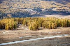 Straße über dem Berg und den Wäldern Lizenzfreie Stockbilder