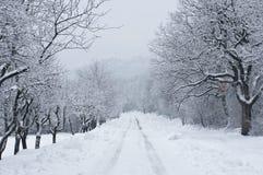 Straße abgedeckt durch Schnee Stockbilder