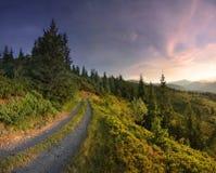 Straße auf dem Berggebiet Stockfotos