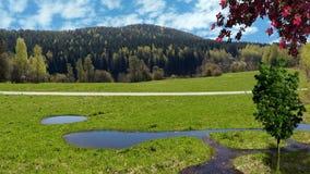 Straße auf dem Gebiet, grünes Gras, Berglandschaft Lizenzfreies Stockfoto