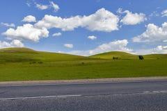 Straße auf dem Gebiet, Langstreckenspur auf dem Gebiet Schöne grüne Hügel Blauer Himmel mit flaumigen Wolken Stockfotografie