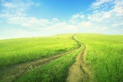 Straße auf dem grünen Feld Lizenzfreie Stockbilder