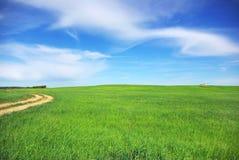 Straße auf dem grünen Gebiet. Lizenzfreies Stockfoto