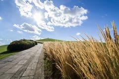 Straße auf einem grünen Hügel Lizenzfreies Stockfoto