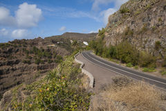 Straße auf La Gomera Stockfotografie
