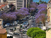 Straße in Cagliari Lizenzfreies Stockbild