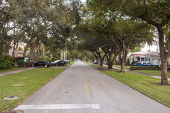 Straße in Coral Gables Stockfoto