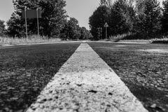 Straße in das Waldschwarzweiss-Foto stockfotos