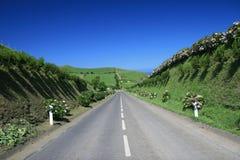 Straße in den Azoren Stockbild