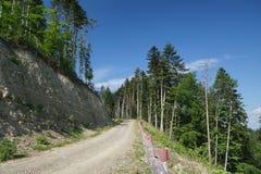 Straße in den Bergen Lizenzfreie Stockfotos