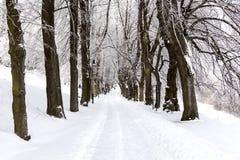 Straße in den Bergen bedeckt mit Schnee Russland, UralJanuary, Temperatur -33C Das Konzept der Freiheit und der Bewegung Stockbilder